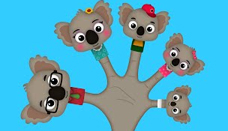 Koala Finger Family